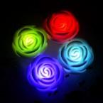LED Ružička